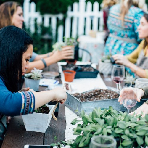 wine and planting on picnic table